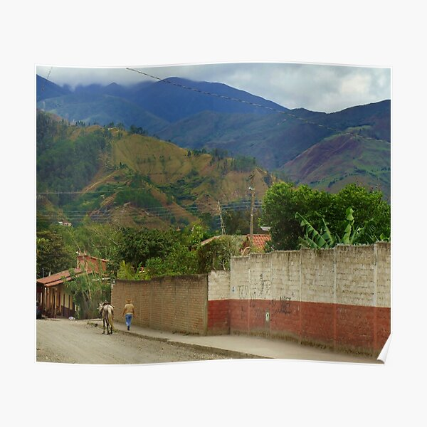 On the Road of Vilcabamba Poster
