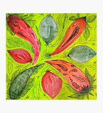 Abstract Vegetable Design Photographic Print