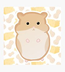 Cute brown hamster! Photographic Print