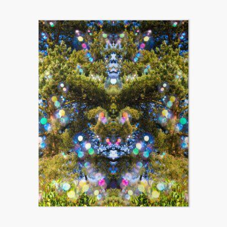 Soap Film - Bubble Bears In The Trees Art Board Print