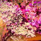 Lilacs Big Color by Susan  Detroy