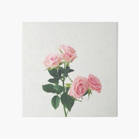 Spring Roses Art Board Print