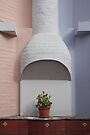 Potted plant placed below stucco chimney against pastel blue and peach walls, Ecuador by Kendall Anderson