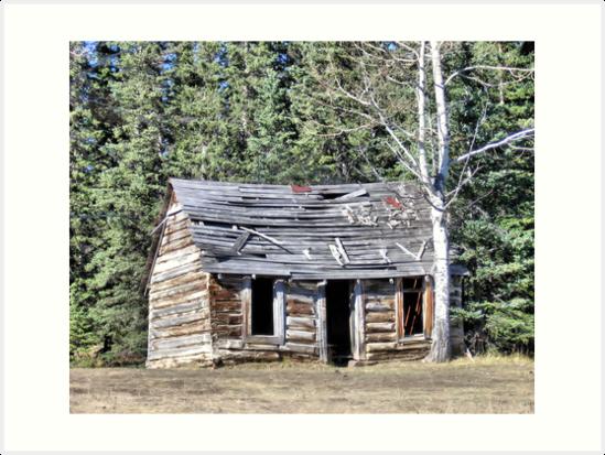 The Preachers Cabin by Leslie van de Ligt