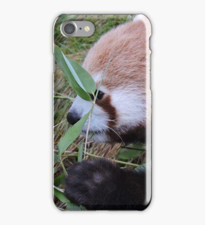 Little Bamboo, Little Panda iPhone Case/Skin