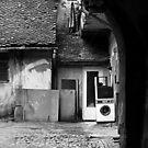 laundromat by alice drogoreanu