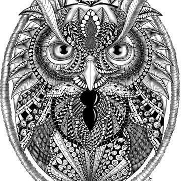 Ornate Owl by BHDigitalArt