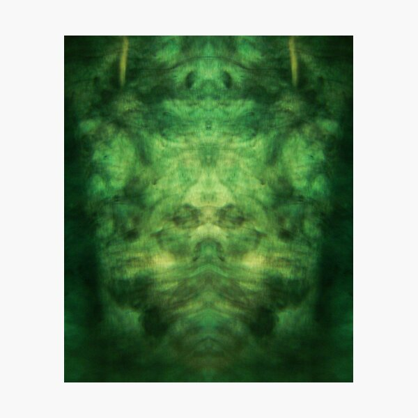 Emerald Wings Photographic Print