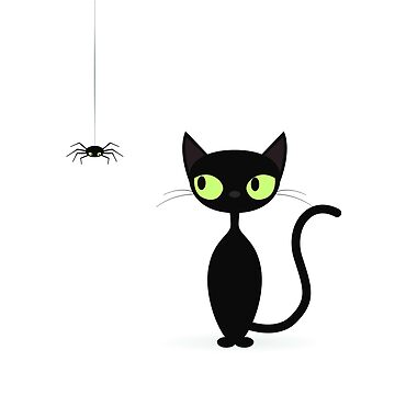 Cat and Spider by ssduckman