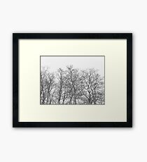 They know it all Framed Print