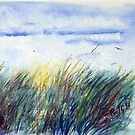 Sunset Reeds - Watercolour by Paul Gilbert