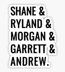 Shane & Friends Sticker