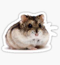 Cute Hamster Shirt - Gift For Hamster Fans And Hamster Lovers Sticker