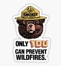 Pegatina Smokey The Bear