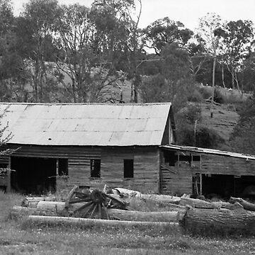 Abandoned Sheep Shed, Trunkey Creek, NSW, Australia by chrisjoy
