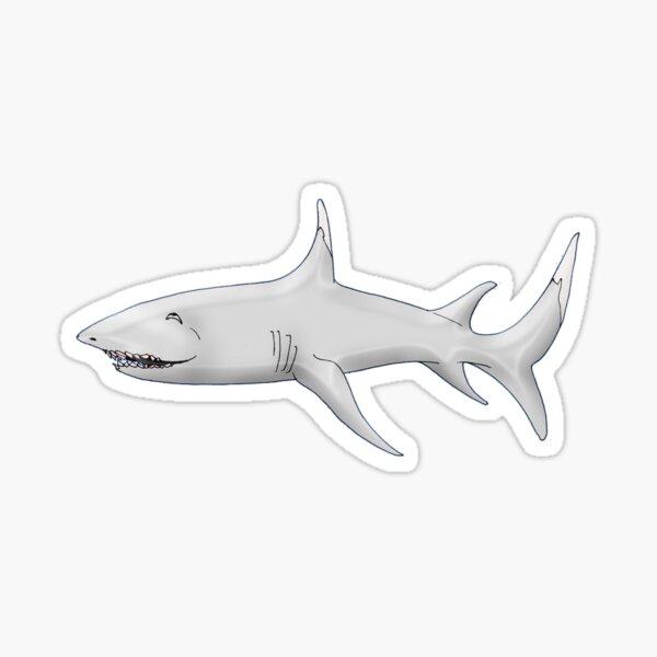 Sleepy Shark Sticker