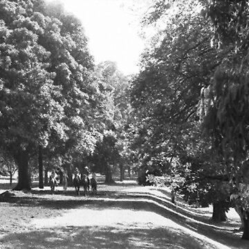 Centennial Park, NSW, Australia by chrisjoy