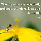 Excellence is a habit by lensbaby