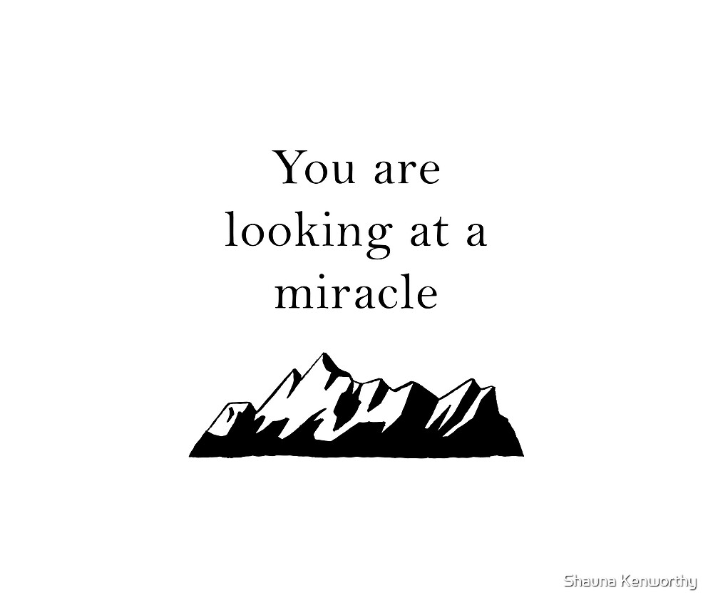 You are Looking at a Miracle 2 by Shauna Kenworthy