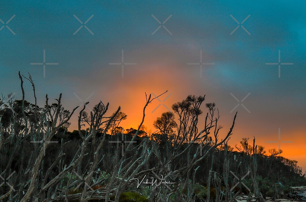 Sunset at Duck Point, Yanakie, South Gippsland, Victoria, Australia. by Vicki Walsh