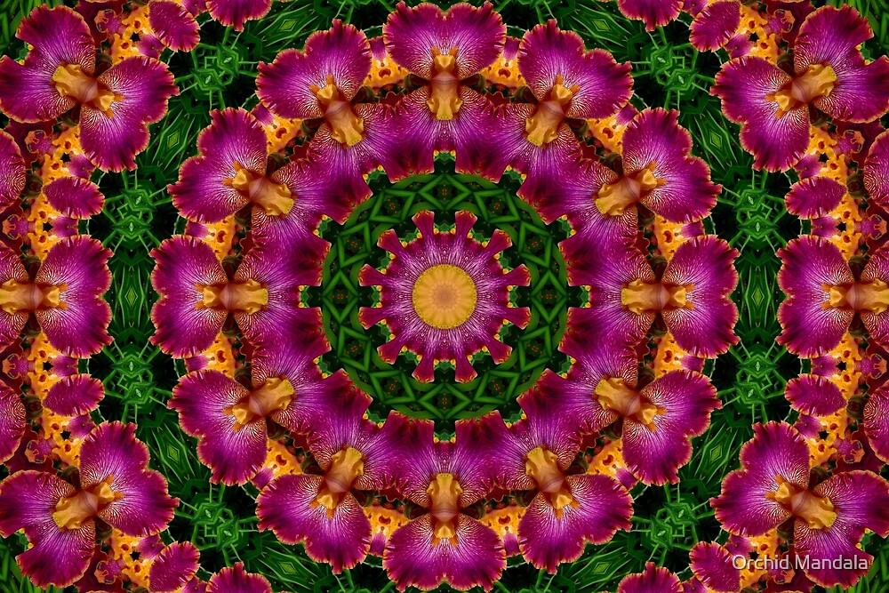 Mandala - Kaleidoscopic Iris by Orchid Mandala