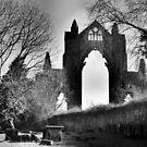 Guisborough Priory by Francis Drake