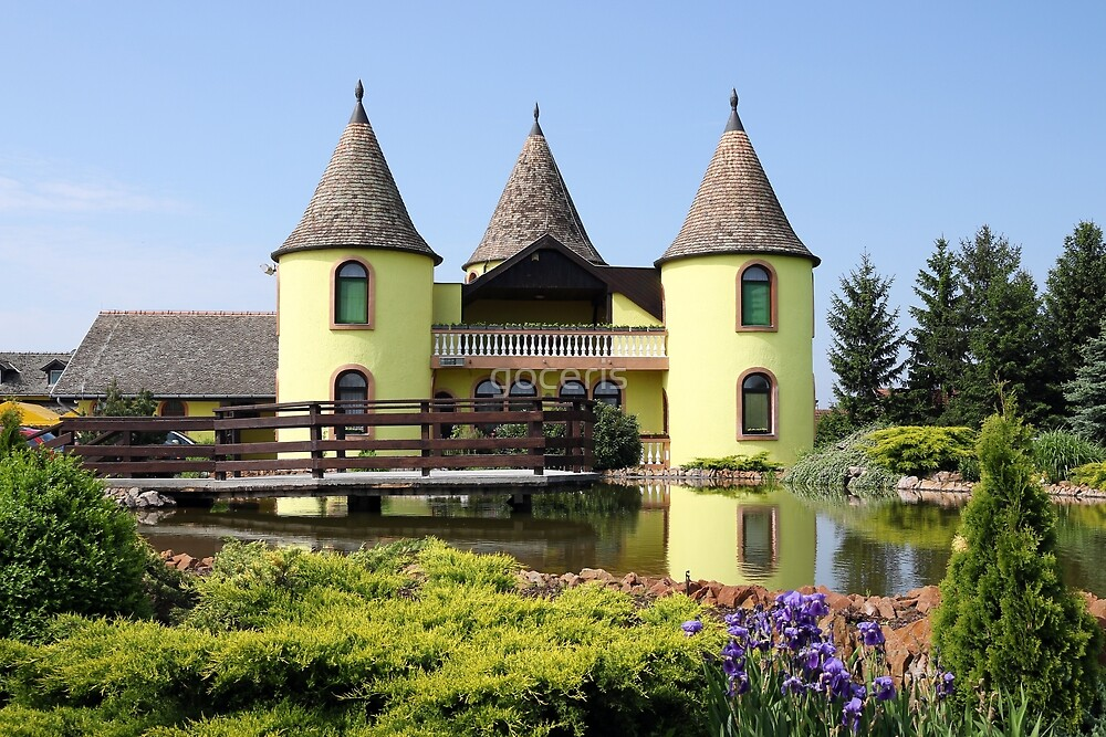 castle with pond Eastern Europe Serbia by goceris