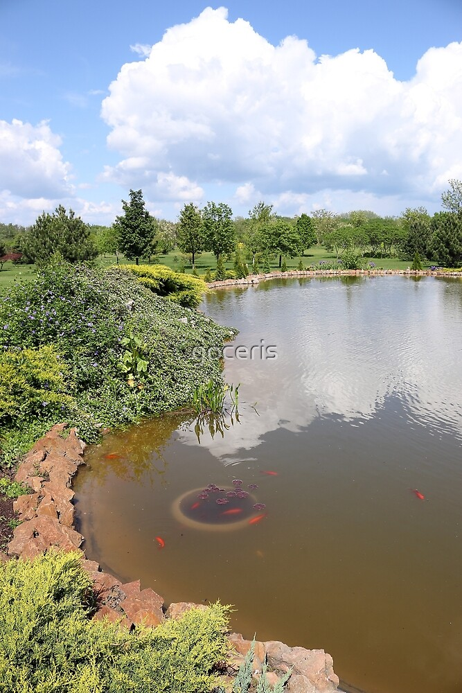 pond with fish trees and blue sky landscape by goceris