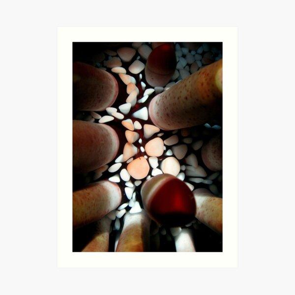 Pencil Urchin Art Print