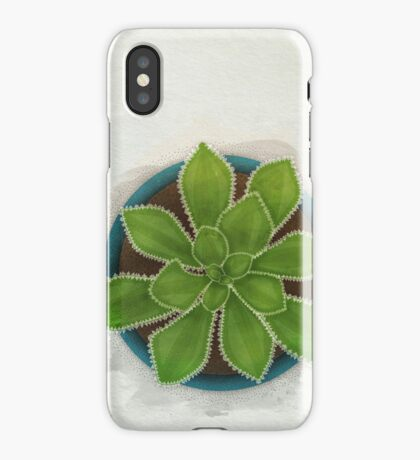 Succulent in Pot iPhone Case