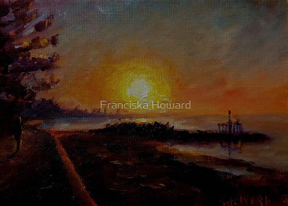 A Winters Morning Sunrise by Franciska Howard