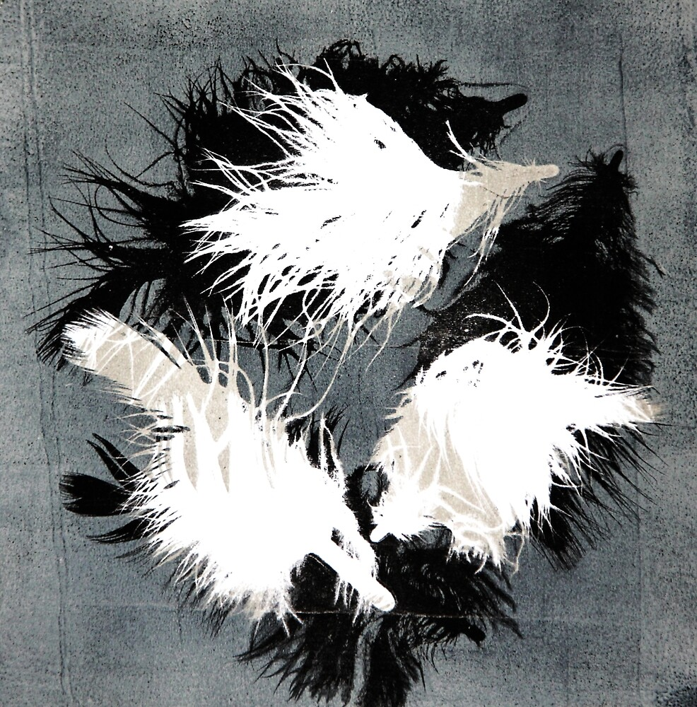 Feathers. Gray by Nataliya Denisova