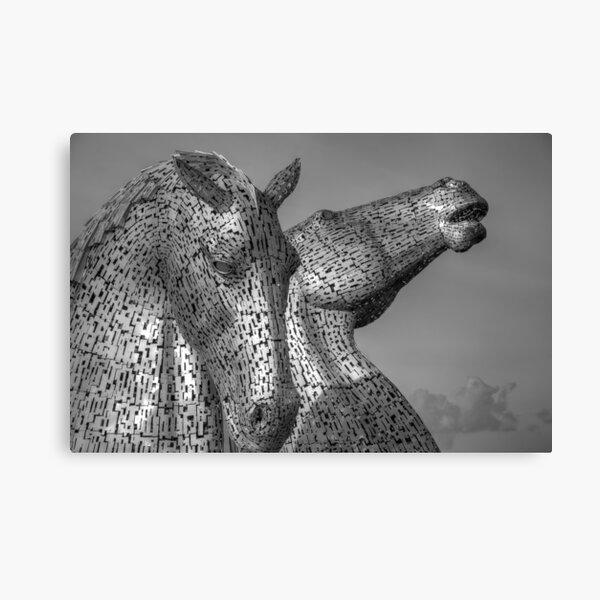 Kelpies - Black and White Canvas Print