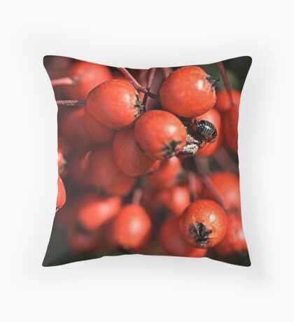 With Nature Throw Pillow