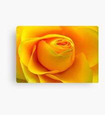 Yellow Folds .. Canvas Print