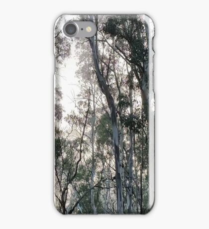 Barham at the Murray iPhone Case/Skin