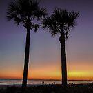 Twilight on the Beach  by John  Kapusta