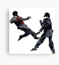 Lienzo taekwondo