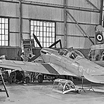Spitfire Tr.8 G-AIDN in storage by oscar533