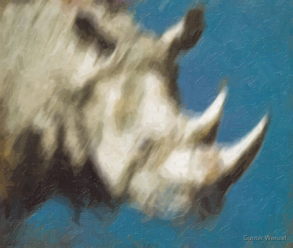 RhinO4 by Gunter Wenzel