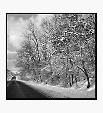 After a spring snowstorm Photographic Print