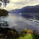 Cruise  Loch  Lomond by Alexander Mcrobbie-Munro