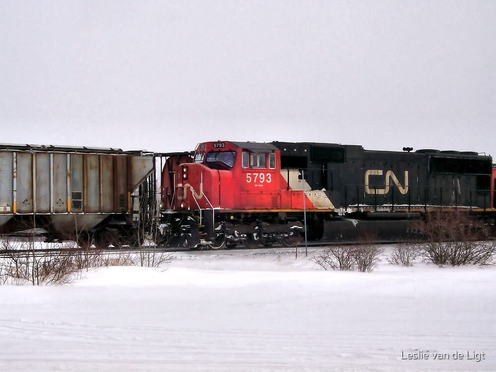 "I Watched The Train Agoin"" by Leslie van de Ligt"