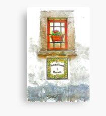Window with flower pot Metal Print