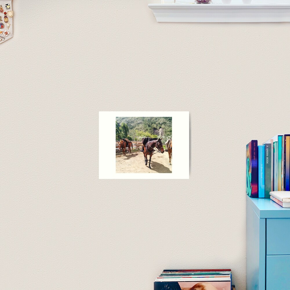 Three horses with saddles waiting for riders Art Print