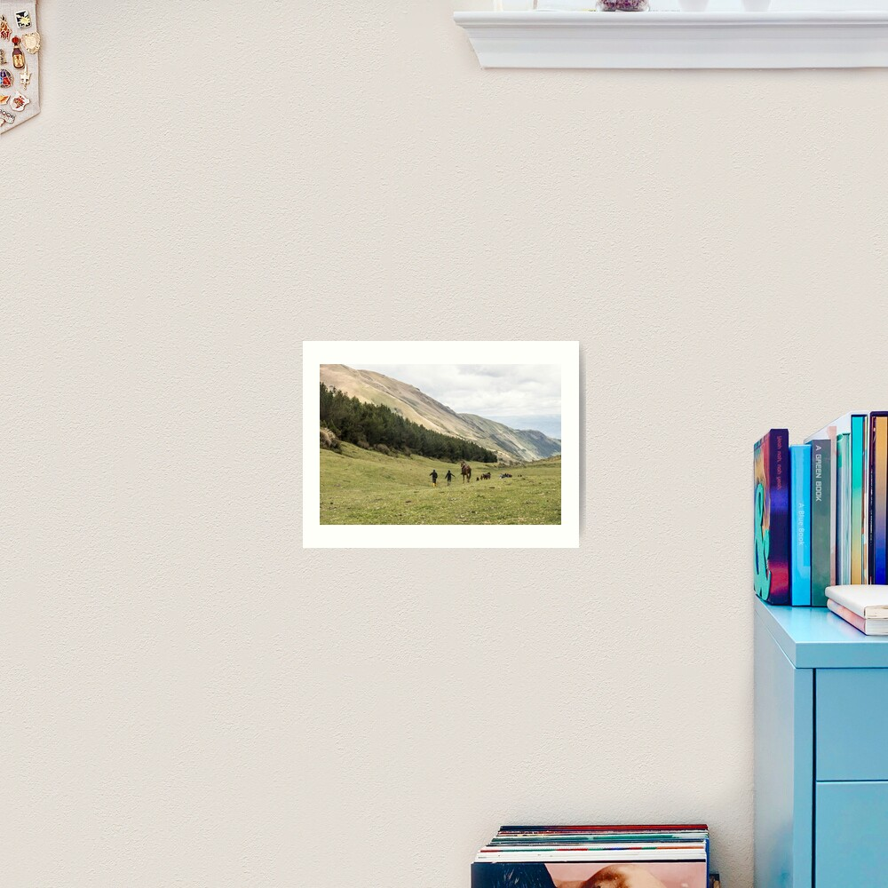 Horses in a valley of the Andes mountains, Ecuador Art Print