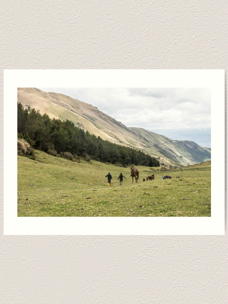 Alternate view of Horses in a valley of the Andes mountains, Ecuador Art Print