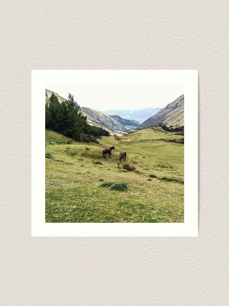 Alternate view of Valley landscape with mountains and horses, Ecuador Art Print