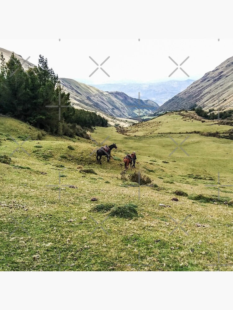 Valley landscape with mountains and horses, Ecuador by kpander