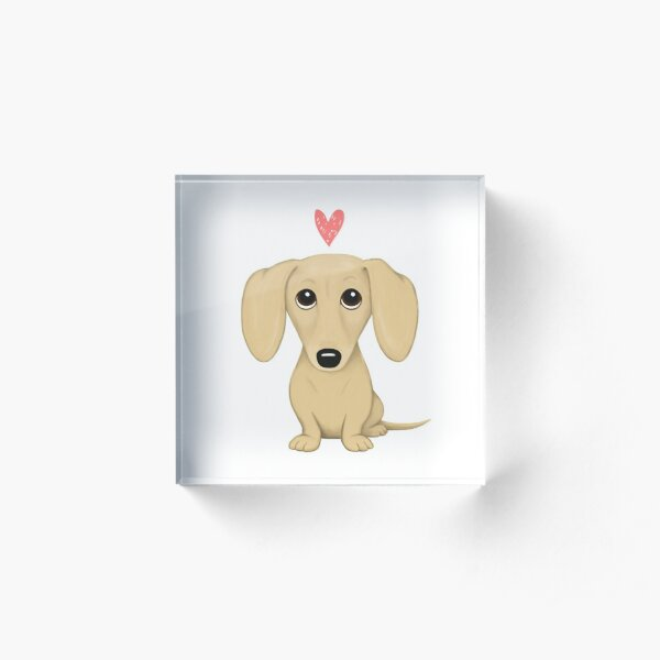 Cream Smooth Coated Dachshund Dog Cartoon with Heart Acrylic Block